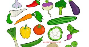 a list of fruits and vegetables